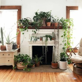 Magnificient Indoor Decorative Ideas With Plants 29