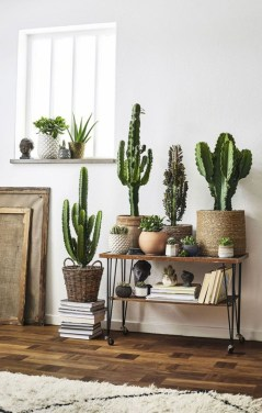 Charming Home Decor Ideas That Trending Today 42