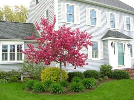 Adorable Flower Beds Ideas Around Trees To Beautify Your Yard 27