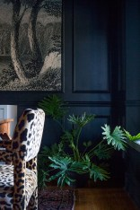 Rustic Houseplants Design Ideas That Are Safe For Animals 31