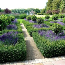 Best Ideas For Formal Garden Design08