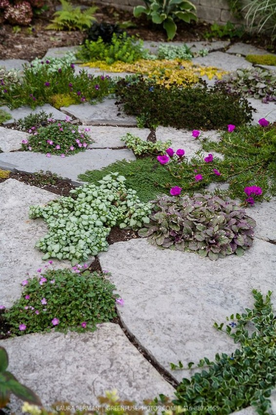 Creative Rock Garden Ideas For Your Backyard15
