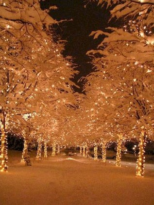 Vintage Outdoor Winter Lights Decoration Ideas01