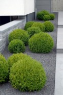 Pretty Front Yard Landscaping Ideas17
