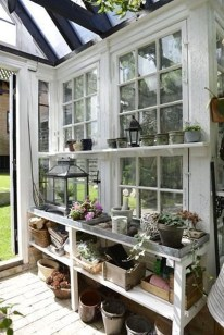 Awesome Shed Garden Plants Ideas19