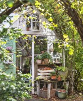 Awesome Shed Garden Plants Ideas29