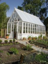 Awesome Shed Garden Plants Ideas31