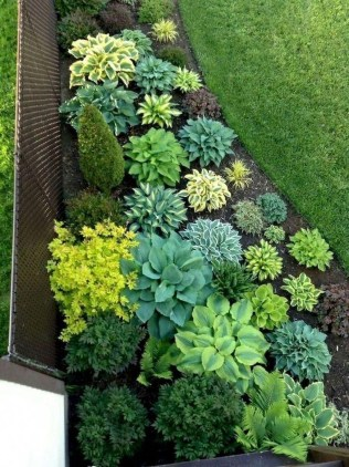 Comfy Low Maintenance Front Yard Landscaping Ideas08