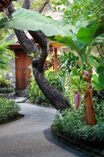 Wonderful Tropical Landscaping Ideas For Garden16