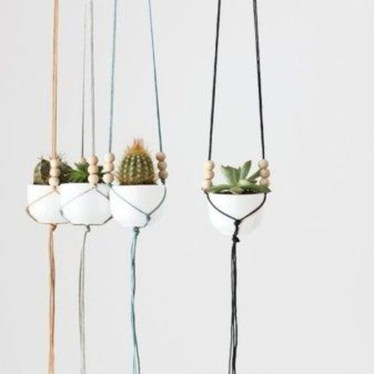 Cool Small Cactus Ideas For Interior Home Design09