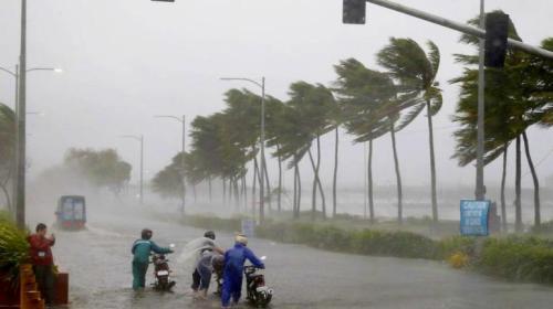 Cyclone-bulbul