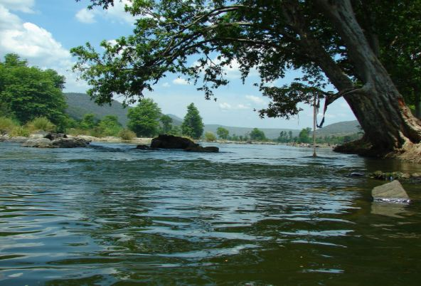 kaveri-top-10-most-popular-biggest-longest-rivers-in-india-2018-2019 just info check