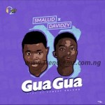 MUSIC: Smallid – Gua Gua Feat Davidzy (Prod. Fynest Roland)