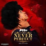 MUSIC: B33is – Never Perfect (Prod. Dj Loxzy)