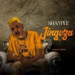 MUSIC: Shaypee – Jingoza