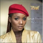 Instrumental: Simi – Small Thing (Remake By Teejah James)