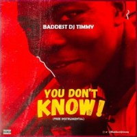 INSTRUMENTAL: Baddest DJ Timmy – You Don't Know (Free Instrumental)