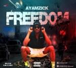 MUSIC: Ayamzick - Freedom (Prod. Elbuzzi Beat)