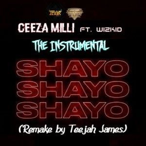"Ceeza Milli Ft. Wizkid - ""Shayo"" Instrumental (Remake By Teejah James)"
