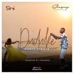 Shegxy - Duduke Reggae Cover