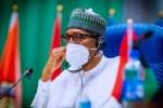 Full speech of President Buhari's Democracy Day address