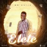 Mr Naija - Elele