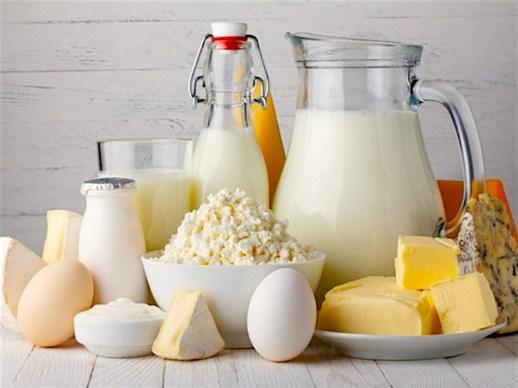 vegetarian-workout-dairy-plan