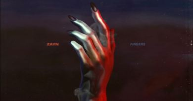 fingers lyrics zayn malik