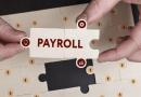 SaaS-based Payroll Software