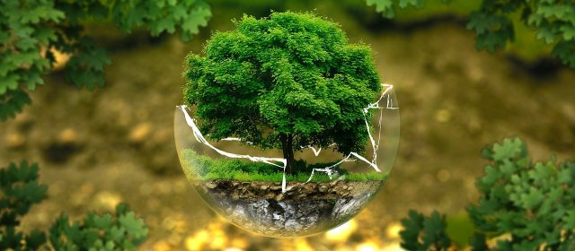 Sustainable Products And Future Eco-Design
