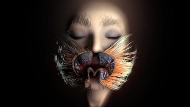"Photo of Björk – ""Losss"""