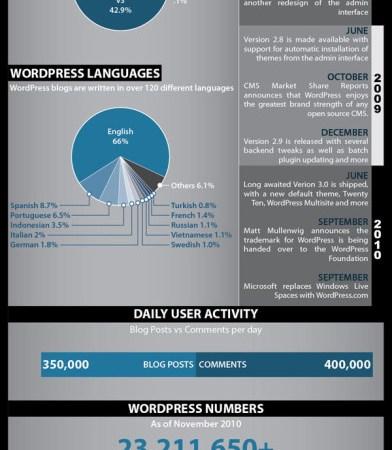 Infographic – Kongen over blogsystemer er kåret