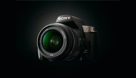 sonya330-3.jpg