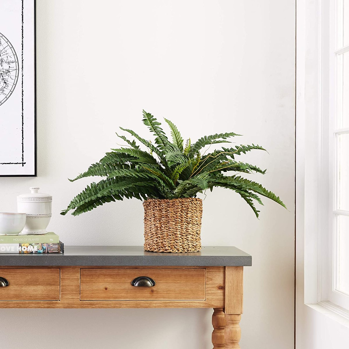 Artificial-Fern-House-Plant