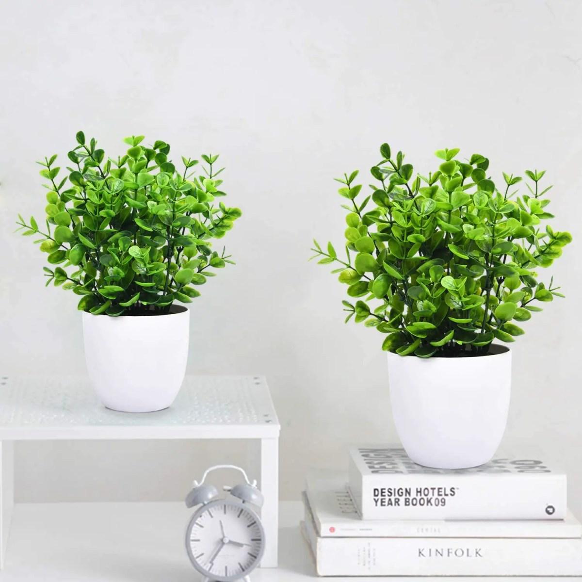 Fake-Eucalyptus-potted-plant