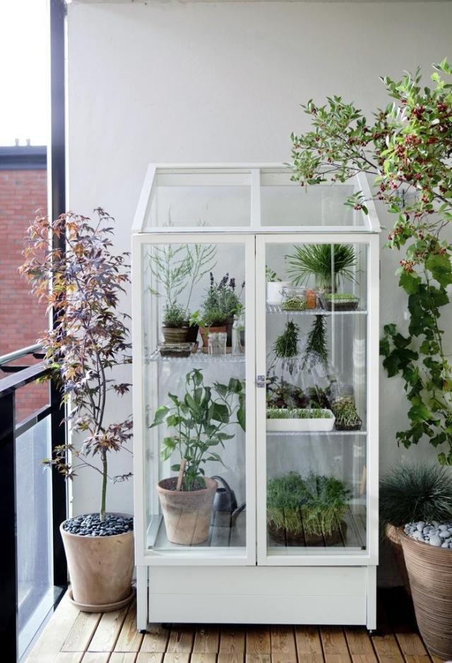 Des idées pour arranger ses plantes d'intérieur