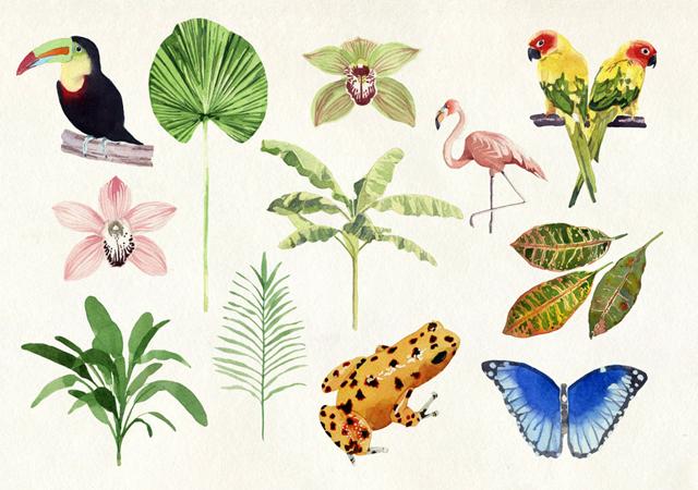 tropicspaper Marcel George
