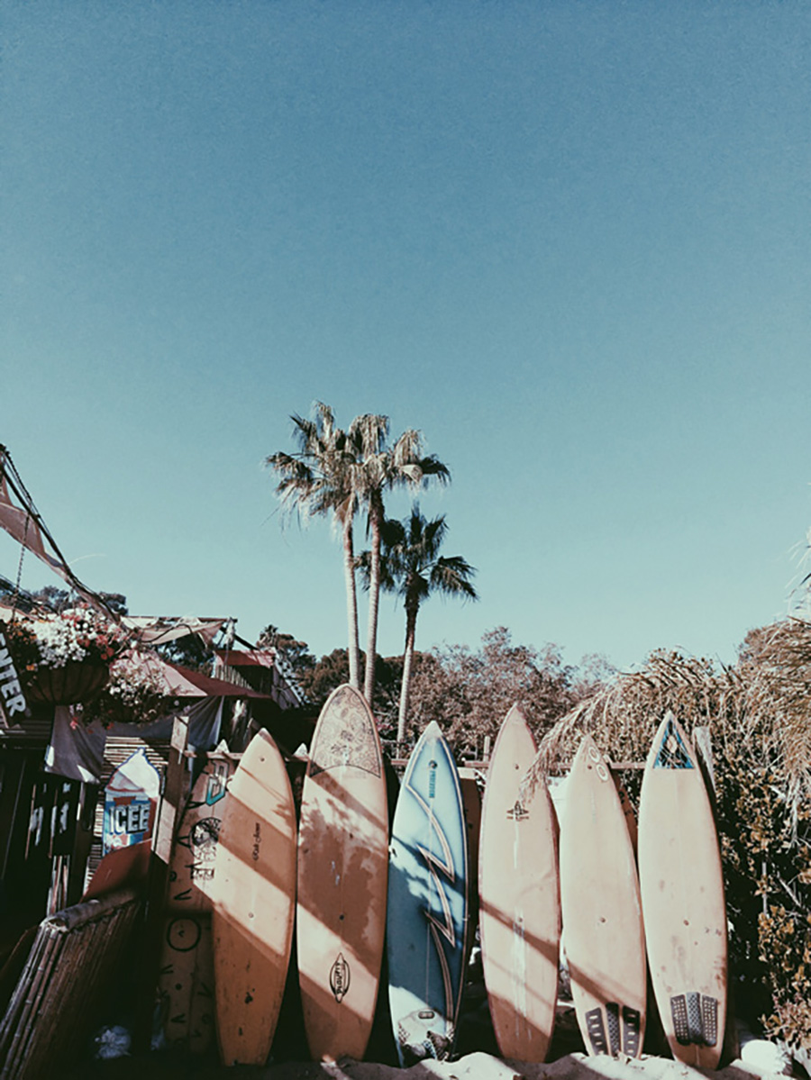 Surfs et palmiers