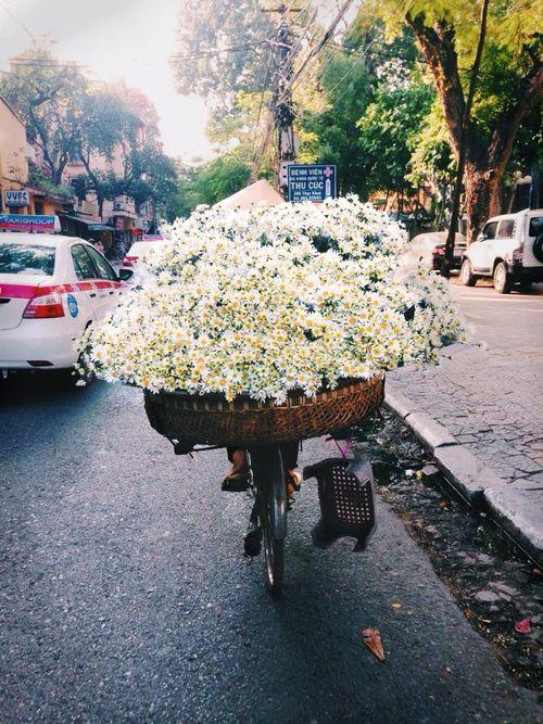 Tuk tuk & Fleurs
