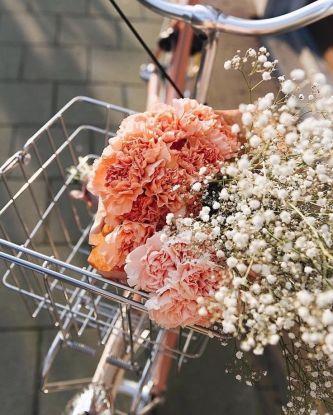 Bouquet de fleurs - vélo