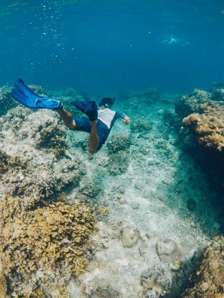 Pur Projet - Avène Eau Thermale - Snorkeling - Menjangan