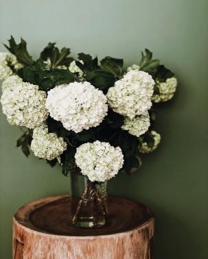 Céline Marks sur Instagram_ Hello Sunday ! J'ai acheté ce bouquet 6€ au marché vendredi et il est toujours aussi beau ! #flowers #celinemarkshome #photooftheday…_files