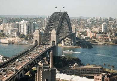 """Invasione di topi 'cannibali', livelli record """"allarmanti"""": cosa dicono gli esperti e cosa potrebbe accadere in Australia"""