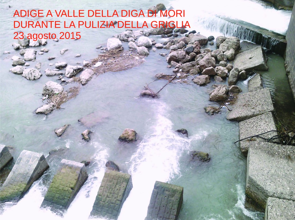 Diga canale Biffis2