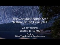 A Constant North Star nature of the Principles