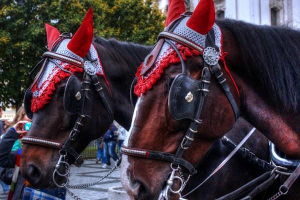 Horse-Drawn-Carriage-Prague-Tres-Bohemes