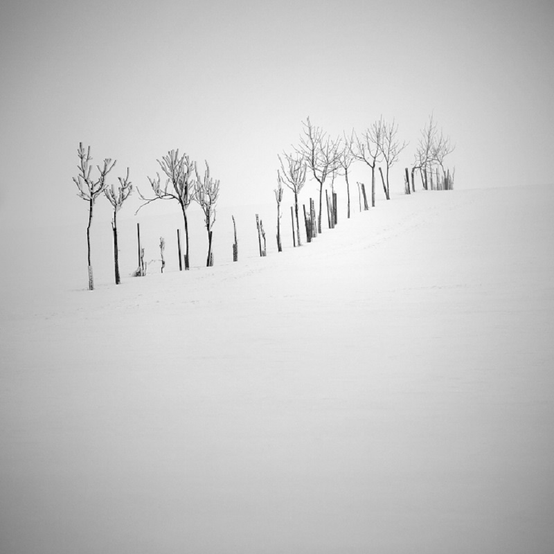 Daniel_Řeřicha-Winter_Wonderland_10