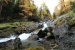 Colori d'autunno lungo il fiume.