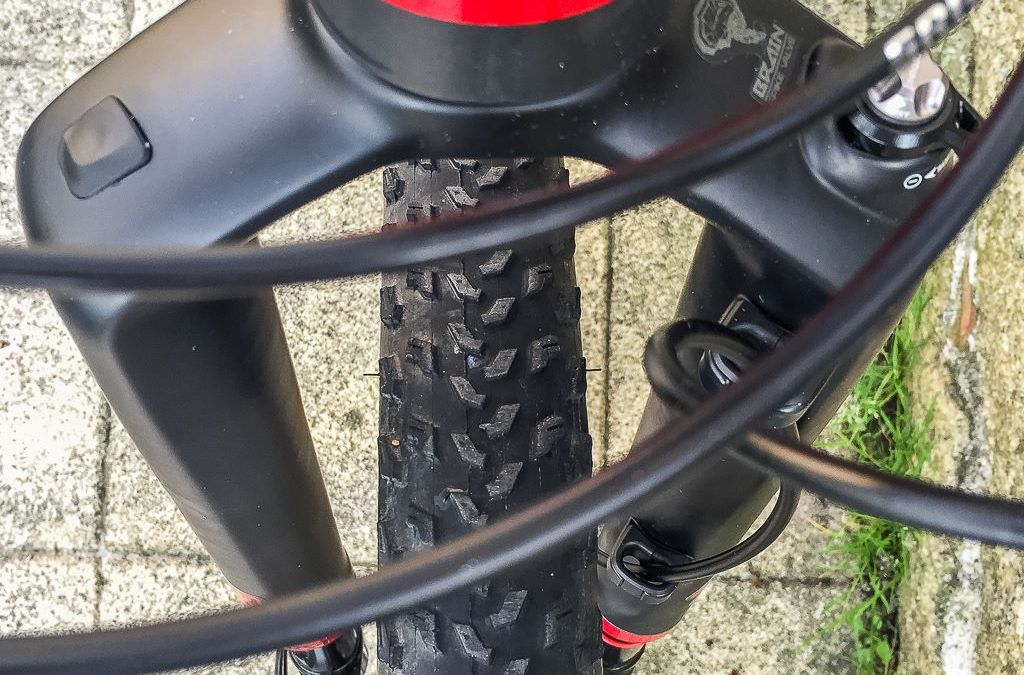 Stumpjumper S-Works RS-1