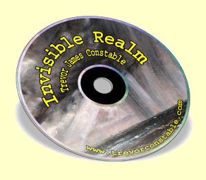 Invisible Realm by Trevor James Constable